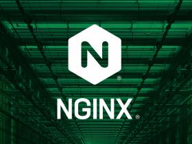 升级服务器重启后无法启动Nginx